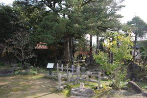 文化苑の庭園